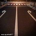 写真: 右か?左か?