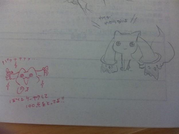 写真: テスト裏にキュゥべぇ描いた...