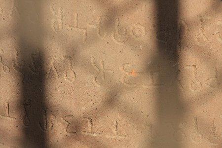 2010.01.31 バナーラス ダメーク・ストゥーパ アショーカ王の石柱