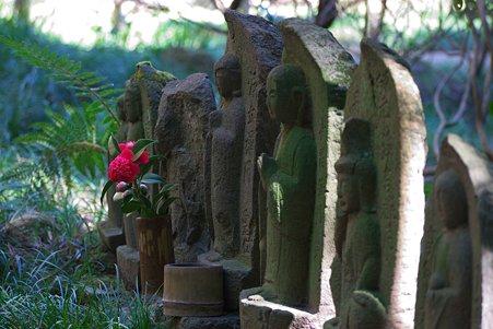 2011.03.04 鎌倉 報国寺 中庭の石仏に椿