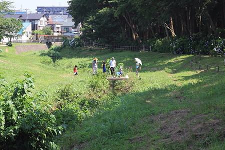 2011.06.25 和泉川 川遊び