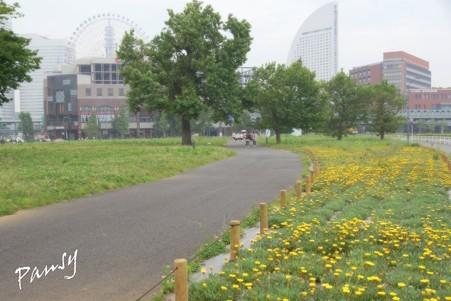 Yokohama 055