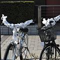 写真: おみくじ自転車1