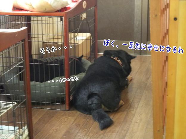 Photos: 密談