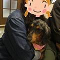Photos: 里親様にバトンタッチ
