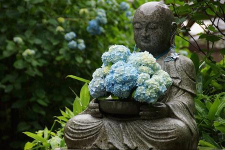 アジサイの花束、花想い地蔵!