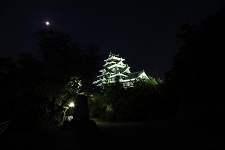 岡山城ライトアップ - 4