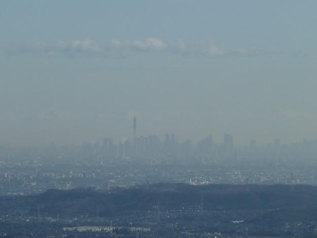 高尾山から東京都心&東京スカイツリーを眺める