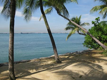 20101231 バラワンビーチ その2