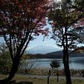 写真: 091106-10紅葉と富士山と河口湖3