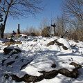 写真: 100116-34大岳山・馬頭刈尾根 山頂の様子