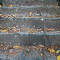 写真: 101119-15羽黒三田神社の階段