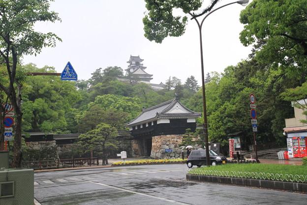 Photos: 110511-34市街からの高知城