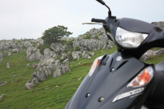 バイクと四国カルスト