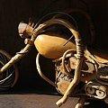 エコロジーバイク