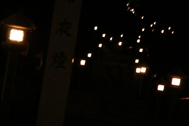 秋葉山常夜橙