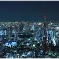 東京タワー(2009年ライトダウン伝説)_005