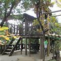 Photos: 生活展 幼稚園の森の中のお家