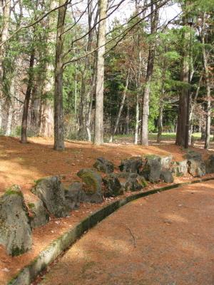 落葉松の落ち葉散る裏参道