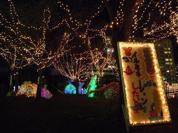 写真: 鳥栖 Heart Light Festa(4)