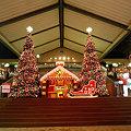 写真: マリノアシティのクリスマス(1)