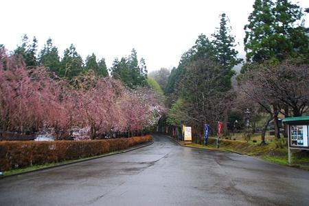 syouwadaibutu05