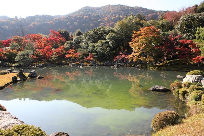 IMG_9782京都の紅葉_2010年11月