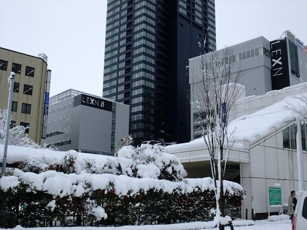 ドカ雪@JR新潟駅南口01 2009-12-17 新潟駅周辺は、紫鳥線の辺りより積雪量が少ない。 Exifなし