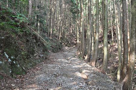 国道260号線・中坂隧道旧道-3