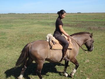 乗馬に挑戦3