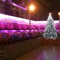 写真: 南千住・地下連絡通路のイルミネーション(2009/12)