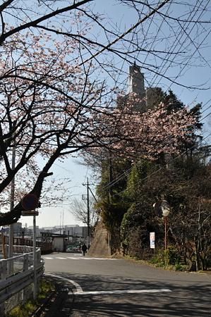 東戸塚の桜 01