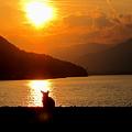 Photos: 宮島にて鹿と夕日の光の道です。
