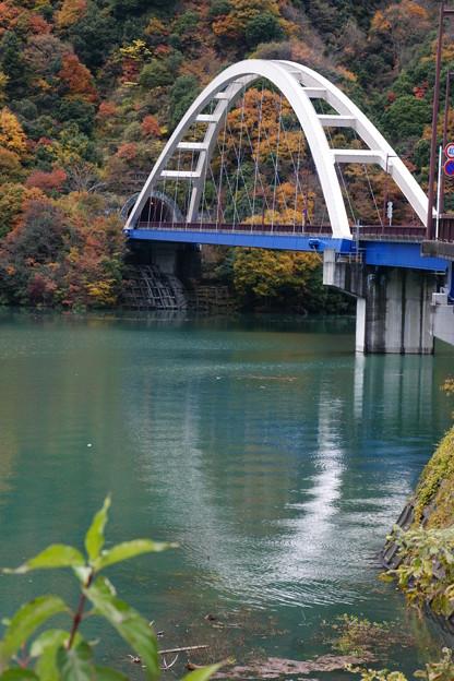 写真: 白い橋